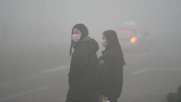 Ô nhiễm môi trường gây hậu quả gì? Tác hại của ô nhiễm môi trường