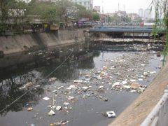 Tổng quan thực trạng ô nhiễm môi trường hiện nay