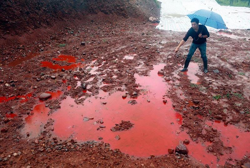 Nguyên nhân dẫn đến thực trạng ô nhiễm môi trường đất ở Việt Nam hiện nay