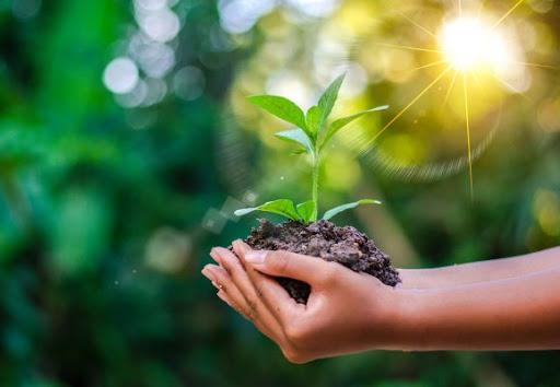 Ngành môi trường có thể làm việc trong các nhà máy, xí nghiệp